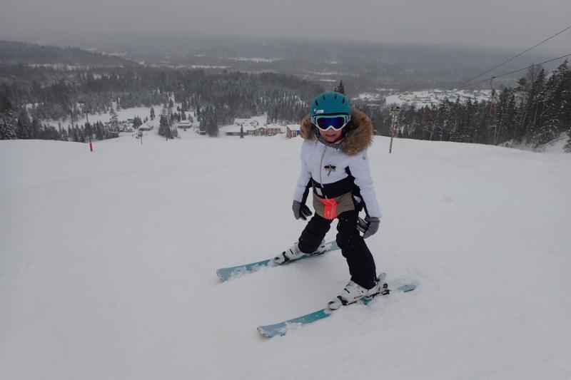 Вид на горнолыжный курорт Любогорье сверху